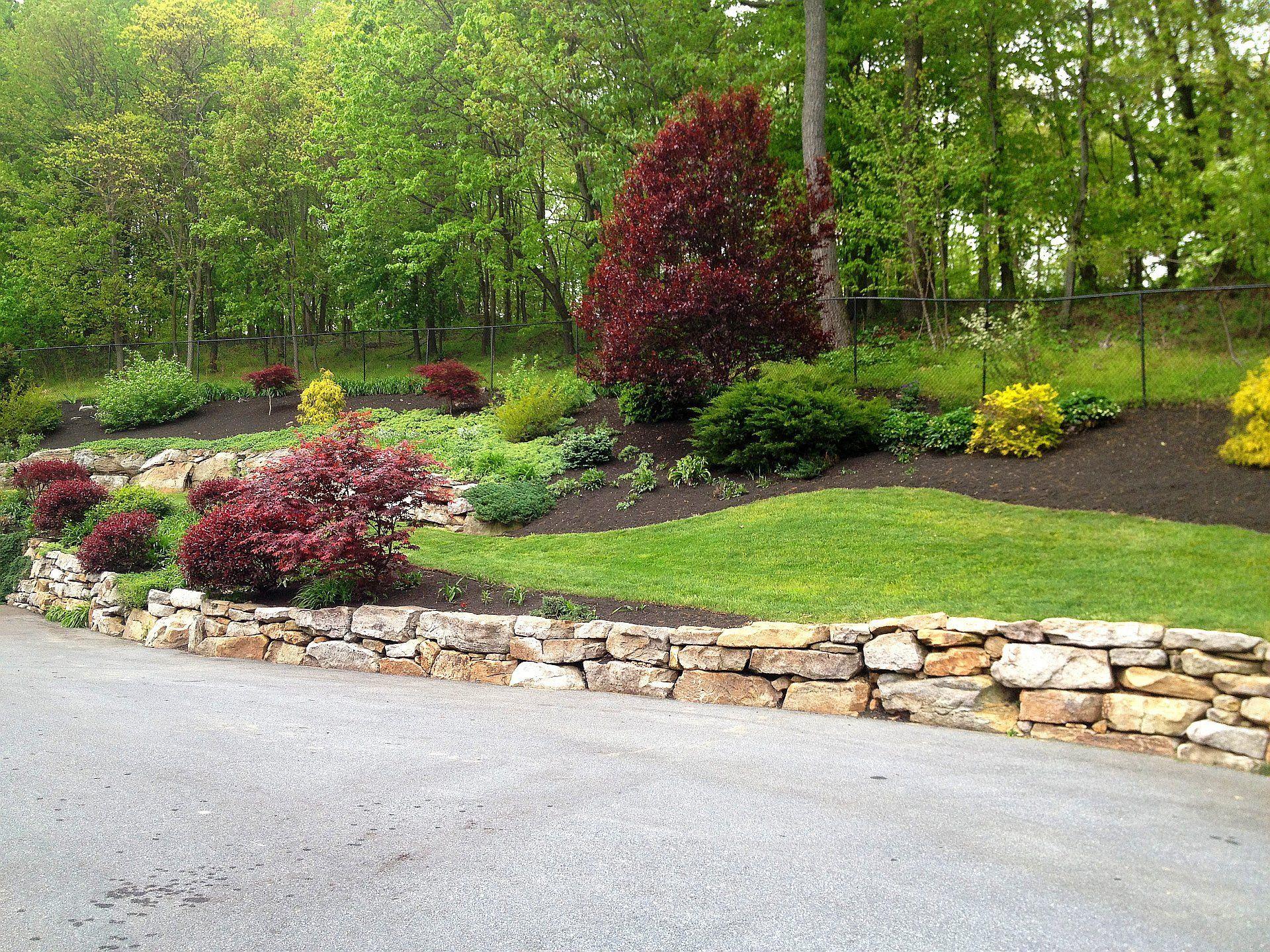Seth_Maurer_Landscaping_Services