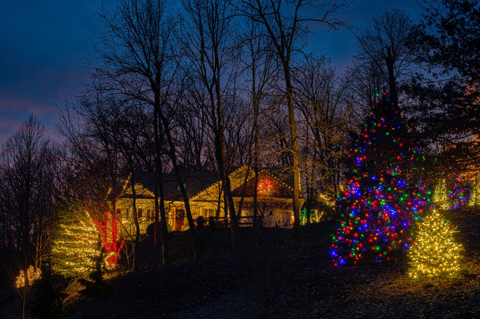 Seth_Maurer_Landscaping_Holiday_Decorating_Property_001_002